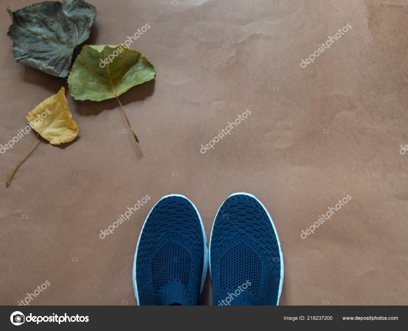 4c843869523b Blue Shoes Leaves Brown Background — Stock Photo © alexat25  218237200