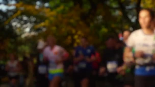 People run a marathon