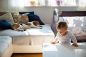 Kaukázusi baba lány áll mellette asztal a napfényes szobában. Beagle kutya hazugság háttérben a kanapé alszik