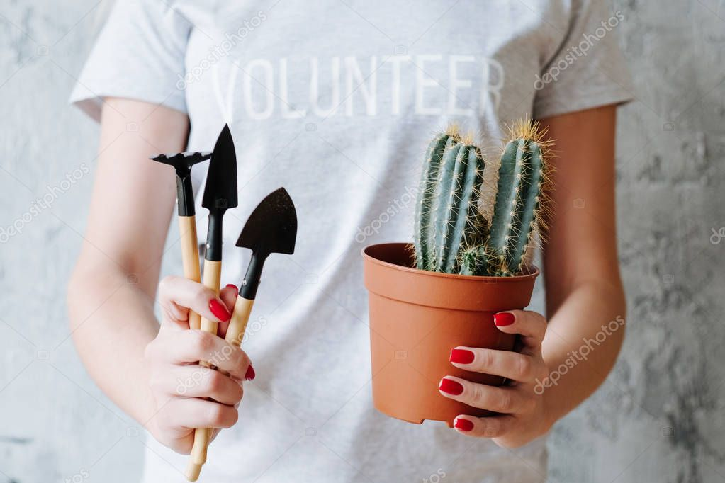 planting volunteer nature protection plant tool
