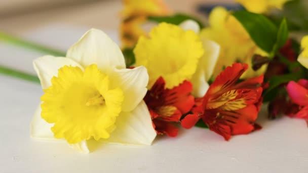 květinový dekor červený žlutý Narcis kosatců