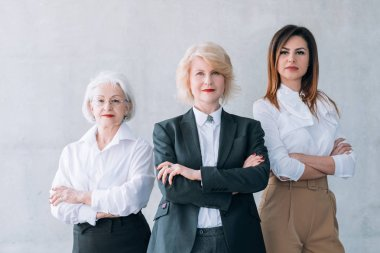 successful business women ambitious female team