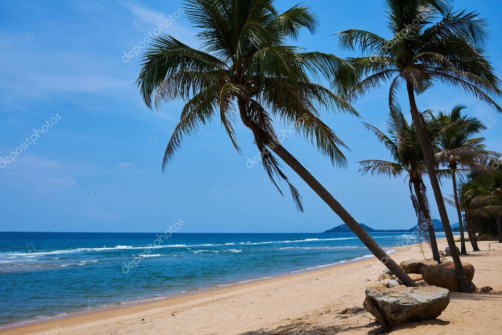 Beautiful beach. View of nice tropical beach with palms around. Holiday and vacation concept.  Untouched tropical beach.