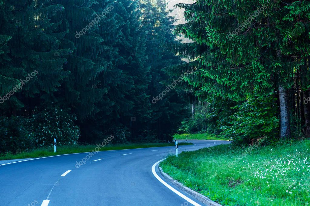 Road landscape. Foggy highway in Black Forest, Germany. Empty winding road leading through famous Black Forest early morning. Travel background. Transportation.