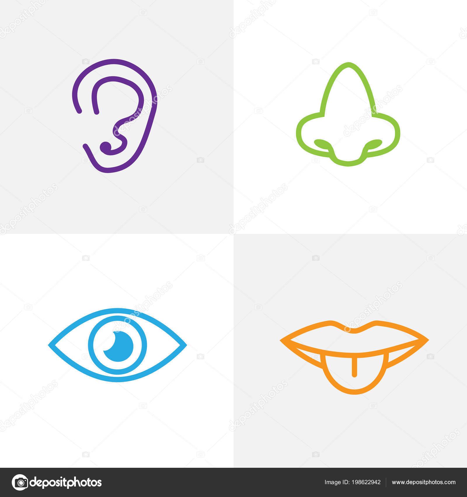 pictogrammen van vijf zintuigen zintuigen symbolen — stockvector