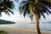 Moře. Tropický ráj. Příroda, cestování