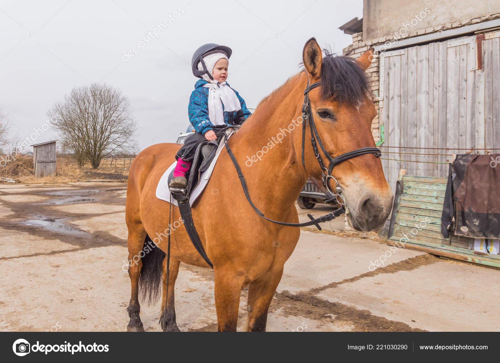 Russia Leningrad Region Nikolskoye March 2017 Stable Horse Riding Girls Stock Editorial Photo C P Kdmitry 221030290