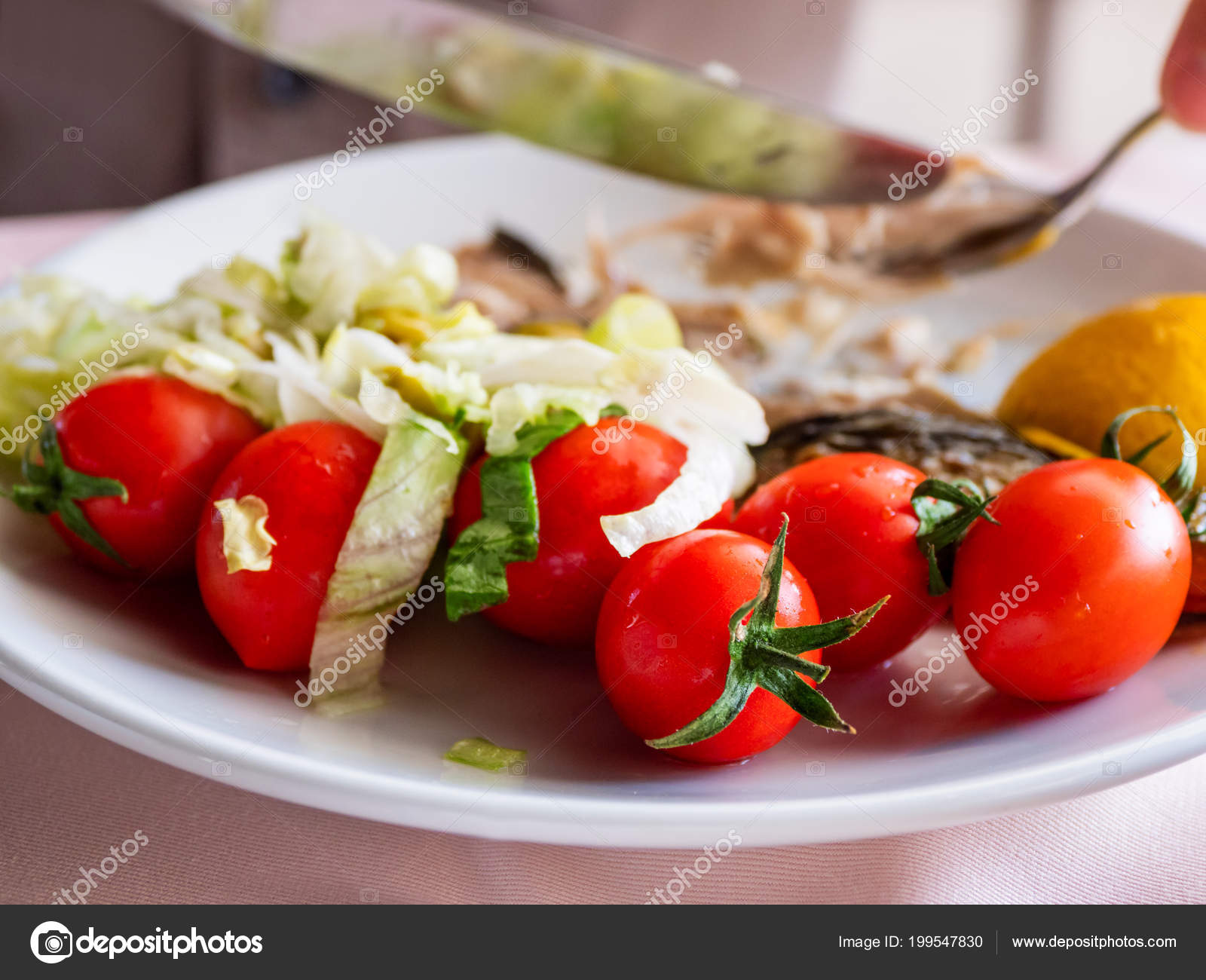 Healthy Dinner Plate Full Stewed Vegetables Grilled Tomatoes Stock Photo