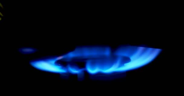 Blaue Flammen eines Gasherdes. Feuer auf Herd im Dunkeln.