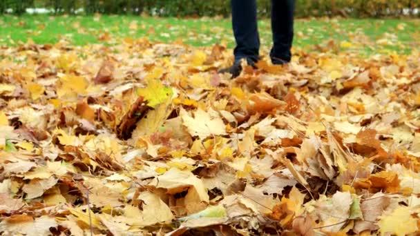 Nő rúgások a bukott juharfa zöld parkban. Őszi szabadtéri tevékenységek.