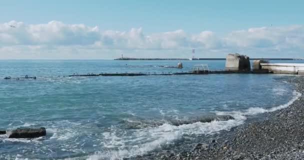 Racek sedí na skále. Maják v přístavu Soči, Rusko. Siluety racků na skalách a klidný mořský příboj.