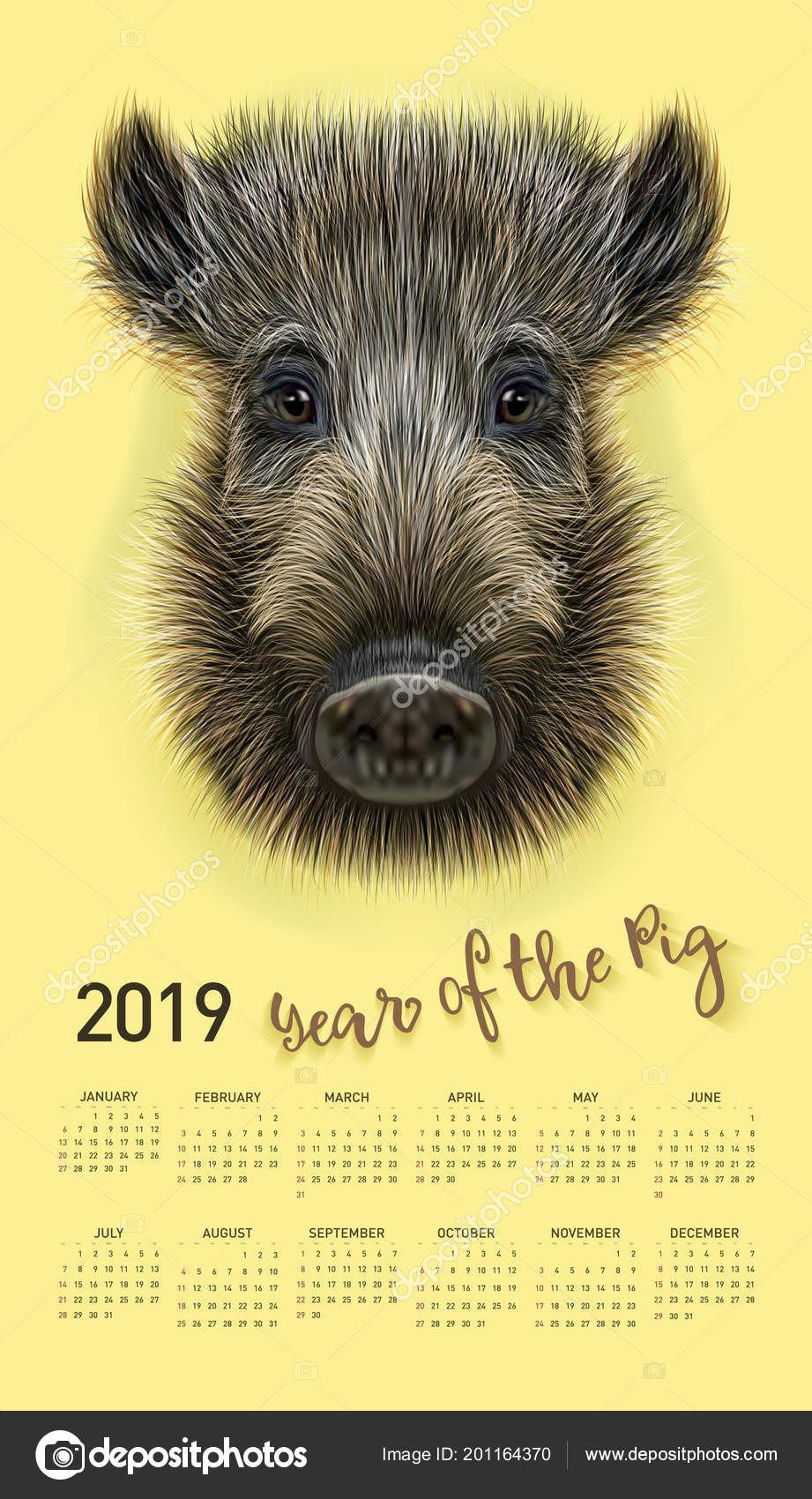 Pig Calendar For 2019 Vector Editable Template With Concept Symbol