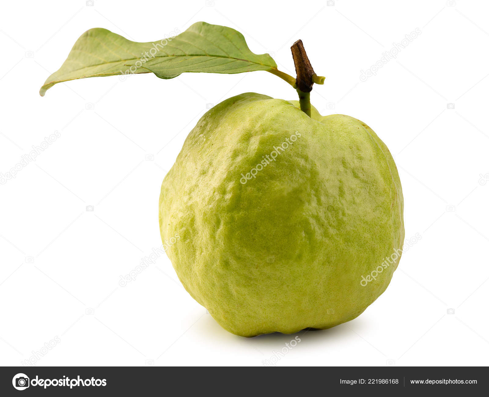 Guava Fruit Isolated White Background Has Clipping Path