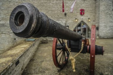 ancient medieval bronze cannon. image of medieval cannon.