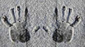 Photo hand prints from the snow on a wooden background