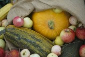 autumn harvest. raw food background.