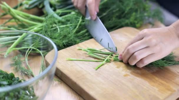 Řezací kopr na salát