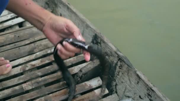 Detailní záběr na člověka řezání vodní had v dlabané kánoe