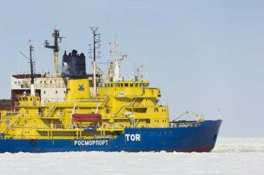 Icebreaker in the port Sabetta. Russia, Yamal, Kara Sea. Winter sunny
