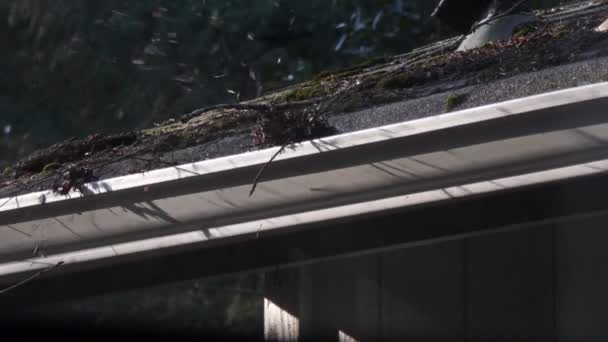 vypálená střecha s listovou ventilátorem