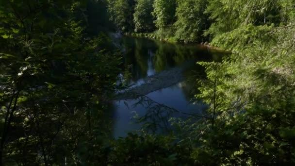 rychlá řeka protékající jehličnatým lesem za jasného oblačného dne