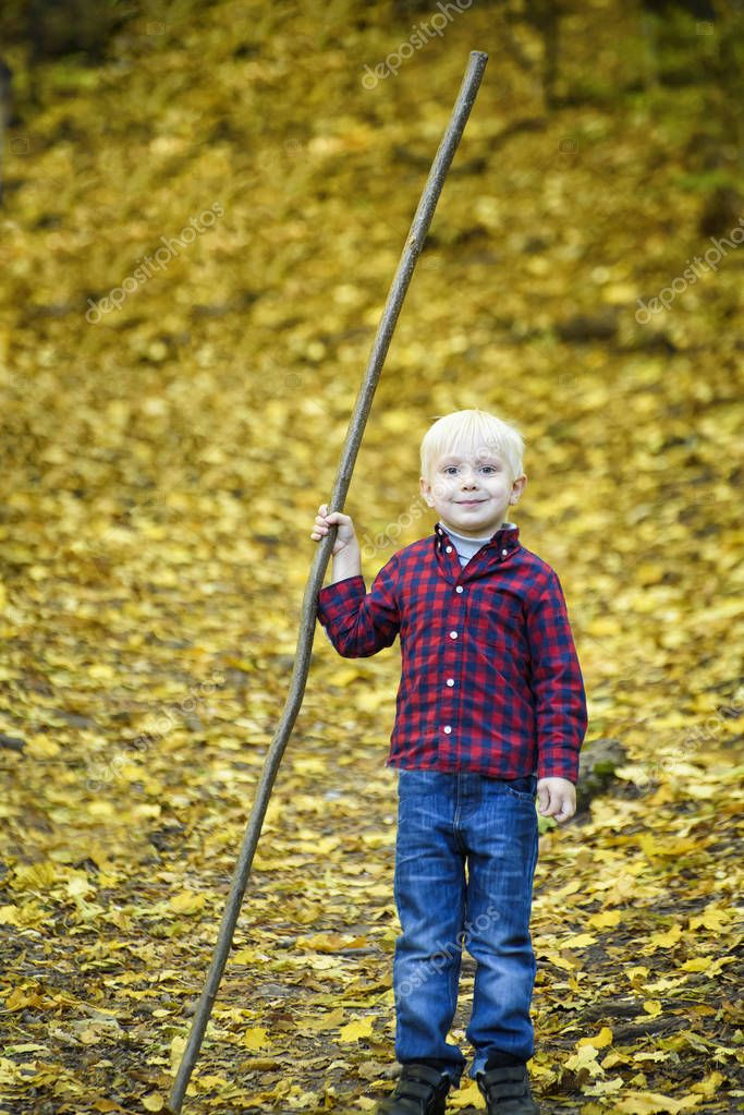 Smiling blond boy with a stick in his hand. Autumn forest