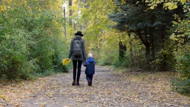 Matka a syn se projdete po podzimní uličce parku. Pohled zezadu