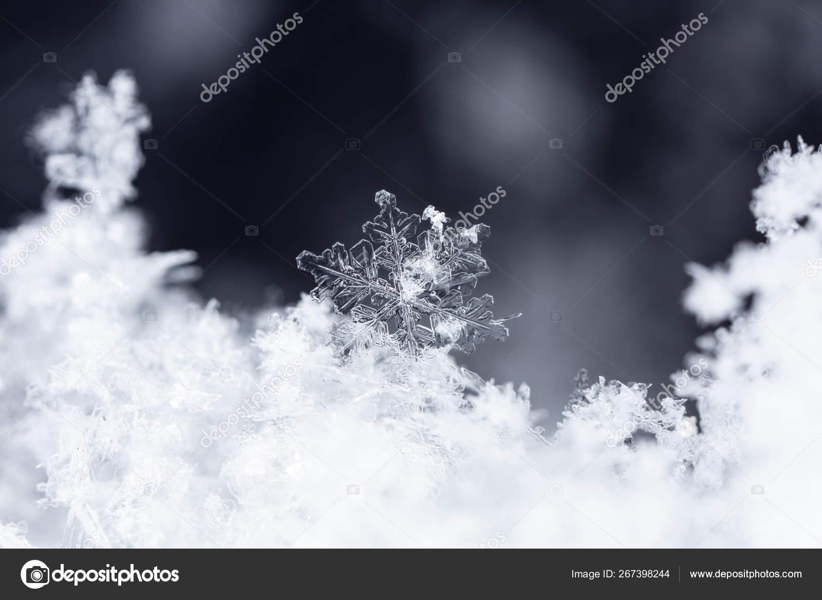 сделать снег на фото апстор как