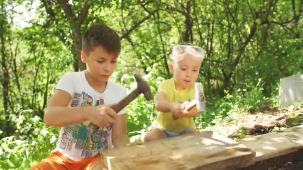Two brothers hammering nails with a hammer