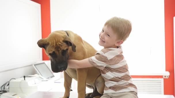 Glücklicher Junge mit Hund in Tierklinik.