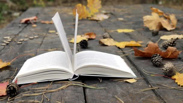 Na starém dřevě je kniha, padlé borové šišky, podzimní žluté listy javoru a dubu. Vítr odfoukne listí a pohne stránkami. Zpomal. Měkké, selektivní zaměření.