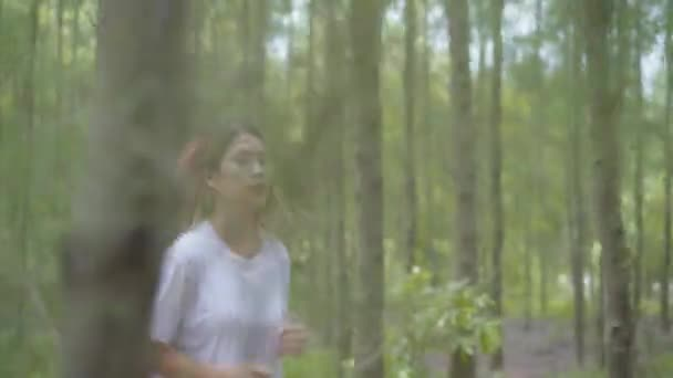 Healthy beautiful young athletic sporty Asian runner woman in sports clothing running and jogging on forest trail. Lifestyle fit and active women exercise in the forest concept.