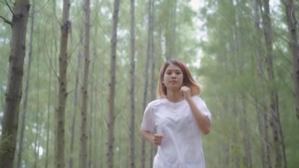 Slow motion - Healthy beautiful young athletic sporty Asian runner woman in sports clothing running and jogging on forest trail. Lifestyle fit and active women exercise in the forest concept.