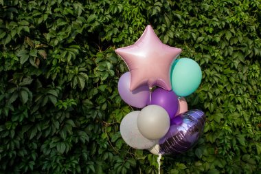 Colorful balloons on the background of green grape leaves. The concept of happy birthday in summer