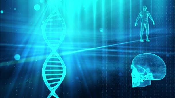 Medizinischer Hintergrund mit DNA-Strang Schädel und Körper