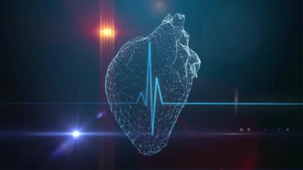 Human heart medical background
