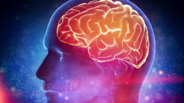 Emberi agy orvosi Cyber-háttér