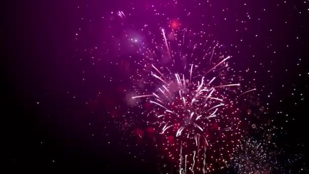 Nový rok ohňostroj fialové pozadí