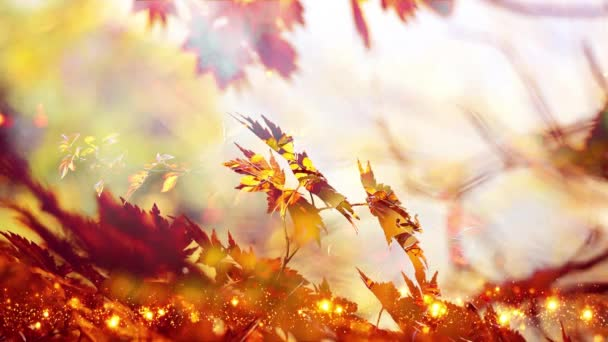 Abstract autumn background with orange leaves