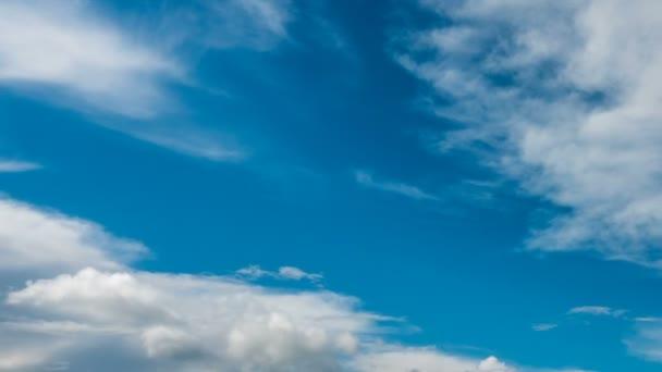 Lasso di tempo bellissimo sopra un loop video del paesaggio di estate appassionato