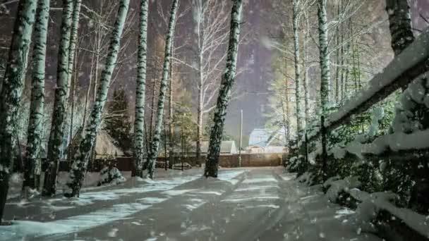 Měkký sníh v zimě zasněženém lese, večerní zimní krajiny, smrkové větve ve sněhu, video smyčky