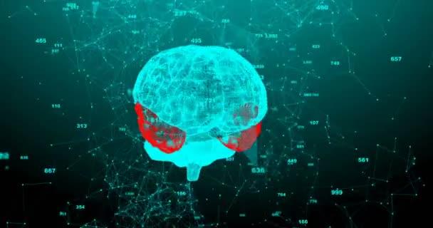 Rotující lidský mozek. Plexus struktura se vyvíjí kolem. Bezešvé smyčky