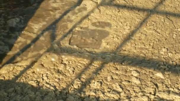 biologische Reinigung von Abwasser Kläranlage Abwasserblasen im Tank, Klärschlamm aktiviert industriellen Abwasserprozess mit Belüftung und Biologie Flocken zusammengesetzt Protozoen