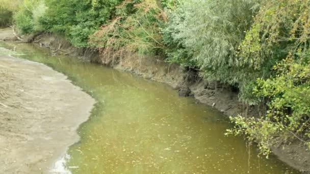 Dürre und Austrocknung des Moravenwassers, Austrocknung der rissigen Böden, Eutrophierung, Klimawandel, Umweltkatastrophe, Sauerstoffmangel für das Wachstum von Cyanobakterien und Algen
