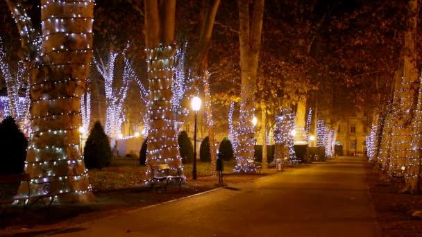Zrinjevac mit Weihnachtsbeleuchtung in der Nacht