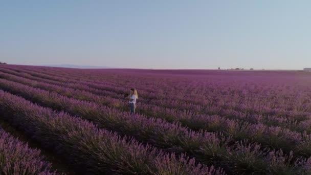 Wanderin spaziert in Lavendelfeld
