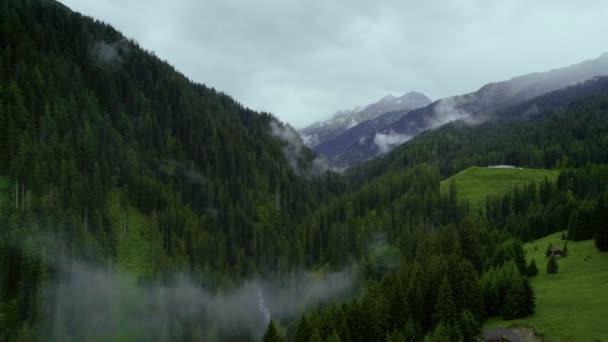 Letecký snímek cloud vrchol hory s lesem