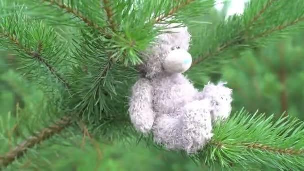 mackó gyerekek plüss játék, a zöld fenyő elhagyott fa ül