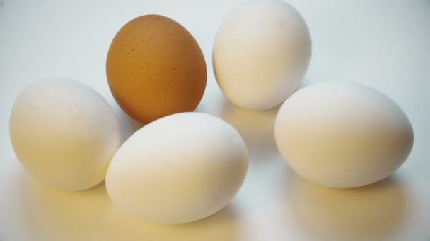Különböző színű tojás repedt a kalapács. Törött élet. a megfélemlítés, idegengyűlölet, rasszizmus.