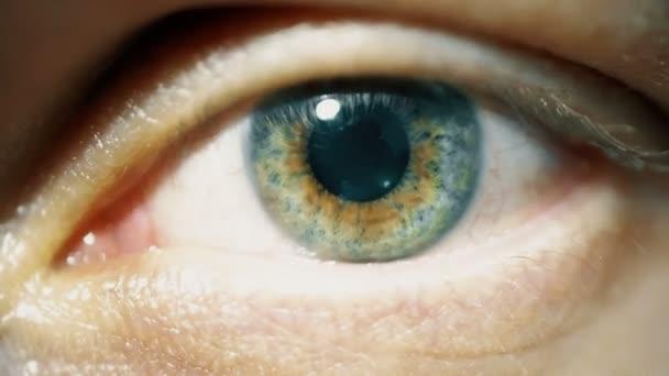 Makro detail lidské oko zelené